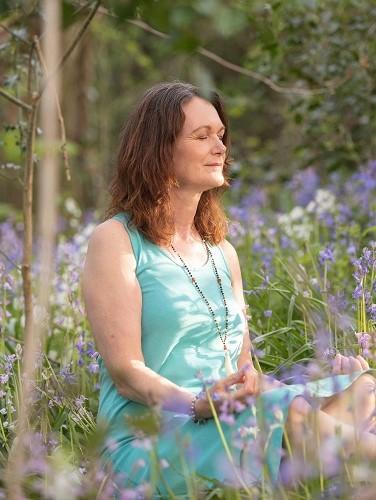 Bluebell meditation